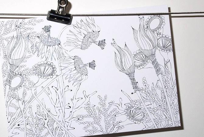 Wunderblumen von graphit-d