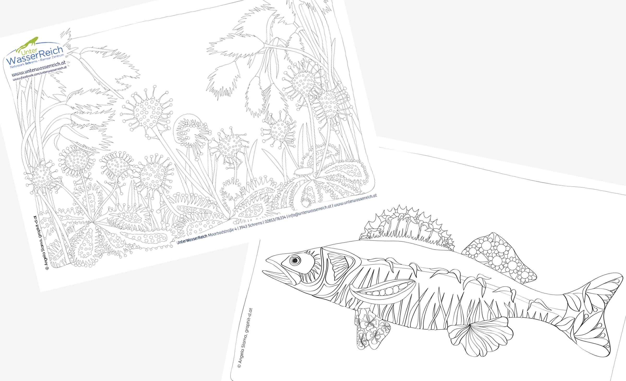 Ausmalbilder - für die BesucherInnen des Unterwasserreichs